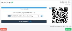 Ways to pay a Bitcoin invoice