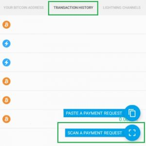 How to pay using the Lightning Network (Scan a payment request)