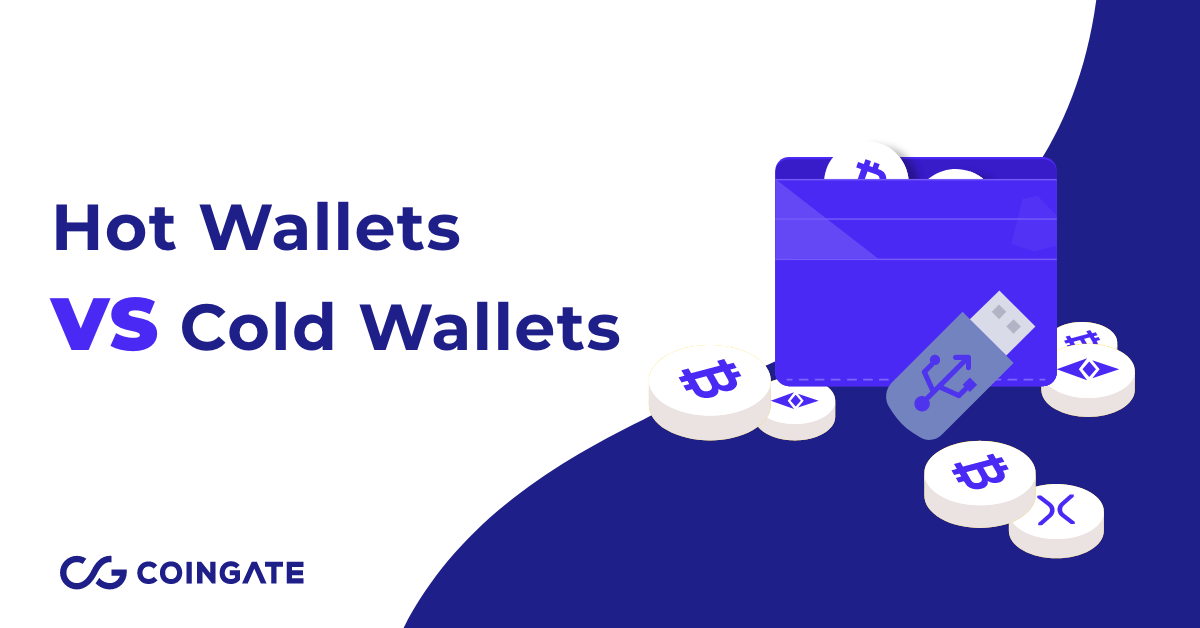 cold wallet hot wallet meaning